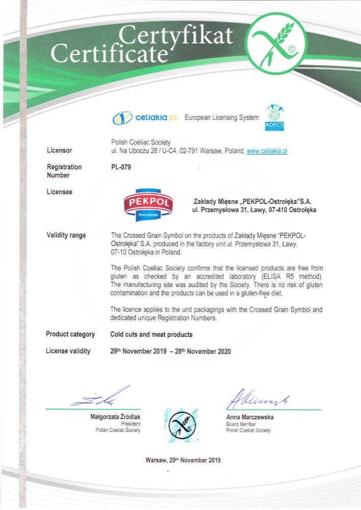 certyfikat-ang-2019-2020